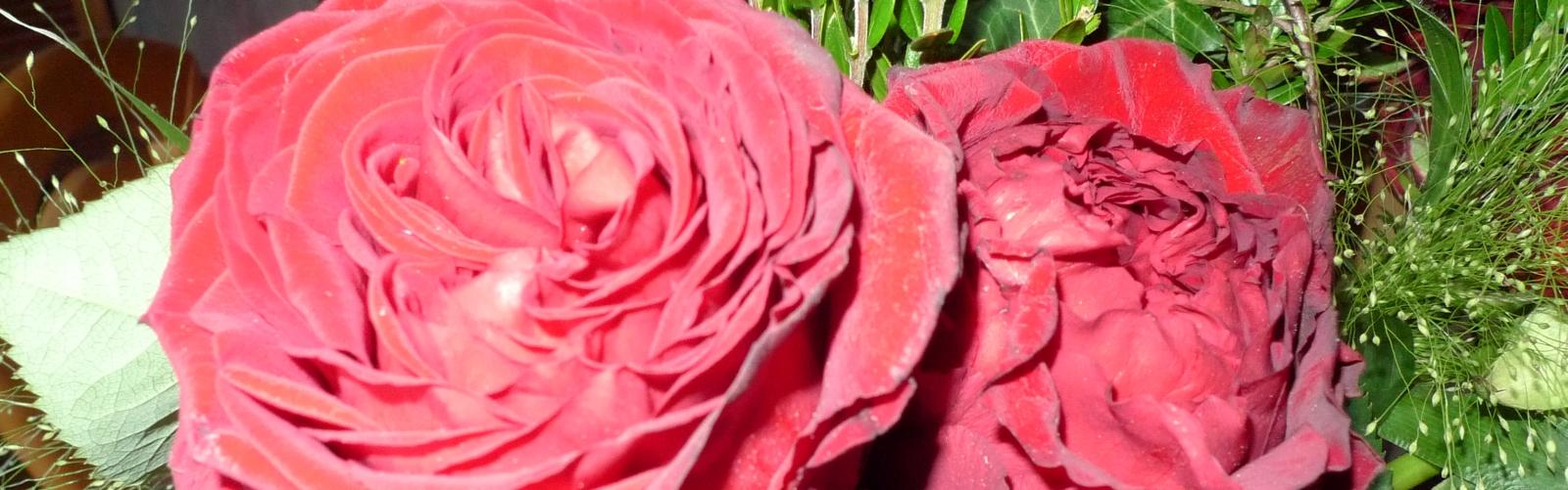 Eine Blumenwiese zum Muttertag